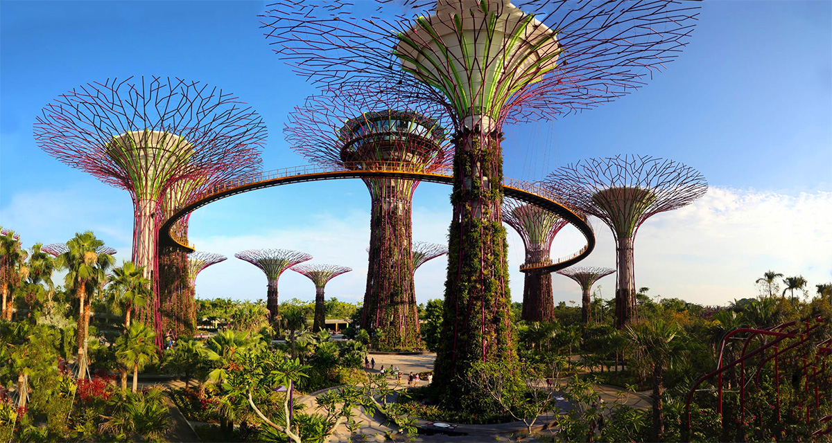 Supertrees Grove at Gardens by the Bay